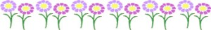 Floral_Asters