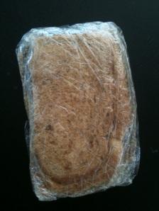 Sandwich in Saran