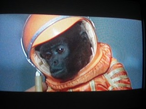 Monkey in a Space Suit