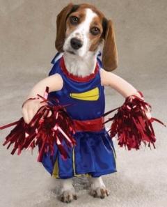 CheerleaderDog_Halloween