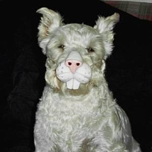 Dog-rabbit_Halloween