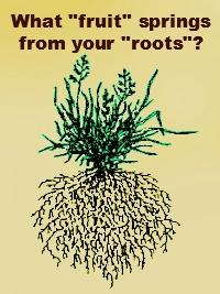 RootsAndFruit