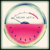 MelonMeterApp_adapted