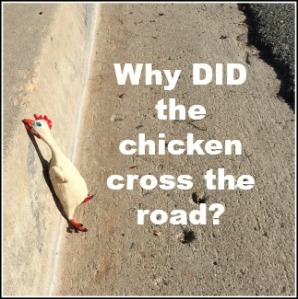 WhyDidTheChickenCrossTheRoad