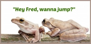 FrogGraphic_LOLwithGod_Freedigitalphotos